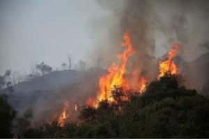 Πολύ υψηλός κίνδυνος πυρκαγιάς την Τρίτη!
