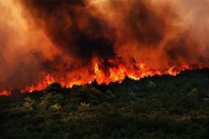 Συναγερμός στη Θεσσαλονίκη: Φωτιά ξέσπασε δίπλα στο κοιμητήριο Αγίας Τριάδας!