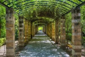 Κλειστός ο Εθνικός Κήπος λόγω «ισχυρών ριπών αέρα»