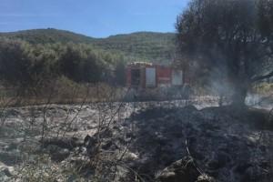 Αγρίνιο: Τρακτέρ με καλαμπόκια έβαλε φωτιά σε αγροτική έκταση (photos)