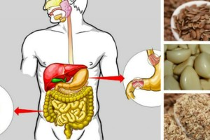 5 τροφές που θα καθαρίσουν γρήγορα και φυσικά το πεπτικό σας σύστημα και θα χάσετε και κιλά