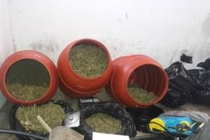 Ηλεία: Συνέλαβαν 56χρονο και αναζητούν άλλους δύο για τα 34 κιλά χασίς