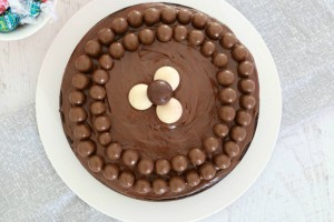 Κέικ σοκολάτας με ινδοκάρυδο, γκανάζ σοκολάτας και maltesers
