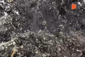 Απίστευτο: Γιγαντιαίος ιστός αράχνης στη λίμνη Βιστωνίδα!