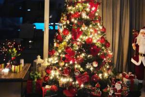 Χριστουγεννιάτικος στολισμός: 7 ιδέες για να διακοσμήσετε το δέντρο σας!