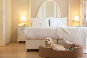 Διαγωνισμός: Mια τέλεια πρόταση για luxury relax!
