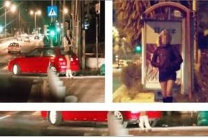 """Σάλος για Ελληνίδες: Ποιες και πόσες κάνουν """"πιάτσα"""" σε ιστοσελίδες και κάνουν τα πάντα! Πόσο πάρει η ταρίφα;"""