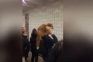 Πόσο cool: Μπήκε στο μετρό με την αλεπού της! (video)