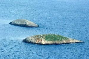 """Πανηγυρίζουν οι Τούρκοι: """"Ο ελληνικός στρατός δεν πλησιάζει στα Ίμια""""!"""