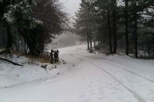 Όλα λευκά: Πυκνή χιονόπτωση στην Πάρνηθα!