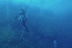 Βίντεο σοκ: Καρχαρίας δαγκώνει το πόδι τουρίστα στην Ερυθρά Θάλασσα