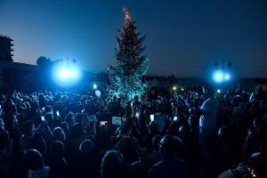 Η φωτογραφία της ημέρας: Η φωταγώγηση του Χριστουγεννιάτικου δέντρου στο Μάτι!