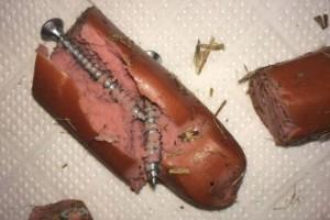 Φρίκη στο Κιλκίς: Έδωσε σε σκύλους λουκάνικα με βίδες!