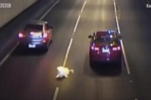 Είχε τύχη... βουνό: Σκύλος έπεσε από αυτοκίνητο μέσα σε τούνελ! (Video)