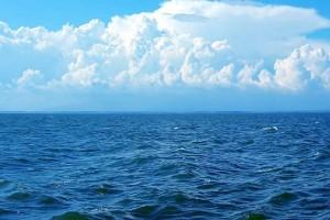 Μετά από αυτό δεν θα ξαναμπείτε στην θάλασσα! (photo)