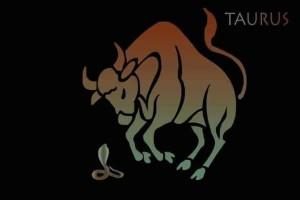 10 λόγοι που κάποια στιγμή θα φας κόλλημα μ' έναν Ταύρο!