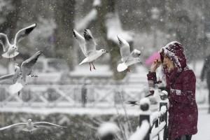 Η φωτογραφία της ημέρας: Καλημέρα από τα παγωμένα Ιωάννινα!