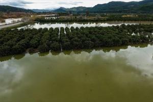 Η φωτογραφία της ημέρας: Πλημμύρες στον ποταμό Αλφειό στην Ηλεία!