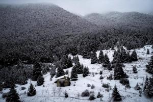 Η φωτογραφία της ημέρας: Στιγμιότυπο από την χιονισμένη Αρκαδία!