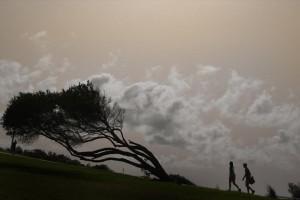 Η φωτογραφία της ημέρας: Βόλτα στο Σίδνεϊ!