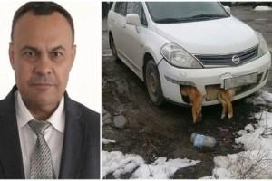 Γιατρός τράκαρε με κουτάβι και οδηγούσε για μέρες με το ζώο κολλημένο στον προφυλακτήρα του αυτοκινήτου του!