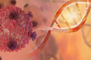 Ελληνίδα ερευνήτρια αποκαλύπτει νέα οπλά κατά του καρκίνου!
