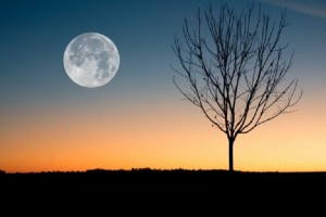 Πανσέληνος στο Ζυγό: Αναλυτικά οι αστρολογικές προβλέψεις για όλα τα ζώδια!