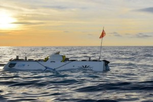 Ινδικός Ωκεανός: Εντοπίστηκε μυστηριώδες πλάσμα που δεν έχουμε ξανά δεί!