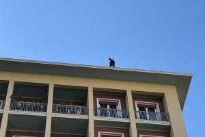 Συναγερμός στο υπουργείο  Εσωτερικών: Συμβασιούχος απειλεί να αυτοκτονήσει!