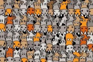KOYIZ: Μπορείτε να εντοπίσετε τον σκύλο ανάμεσα στις αγελάδες σε αυτό το νέο σκίτσο;