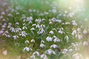 Ζώδια σήμερα: Τι λένε τα άστρα για σήμερα, Σάββατο 25 Μαΐου;