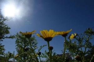Καιρός σήμερα: Υψηλές θερμοκρασίες - Με ήλιο στις κάλπες!