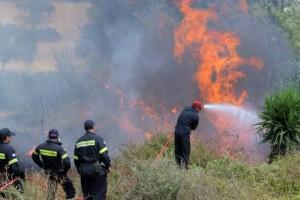 Χαλκιδική: Φωτιά στο Καλαμίτσι!