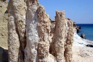 Λέσβος: Τουρίστες έκλεψαν κομμάτια από το Απολιθωμένο Δάσος!