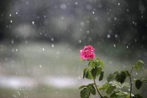 Καιρός: Σήμερα Πέμπτη 20/06 αναμένουμε πάλι βροχές!