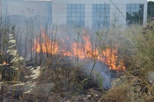 Αργολίδα: Από κεραυνούς ξέσπασαν τρεις φωτιές!