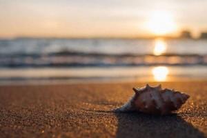 Είναι μυστικό: Αυτές είναι οι 5 παραλίες της Αττικής που δεν ξέρει κανείς!