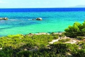 Aυτές είναι οι 7 καλύτερες παραλίες στην Χαλκιδική!