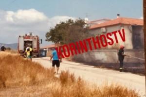 Κόρινθος: Υπό έλεγχο η φωτιά στην Κυρά Βρύση!