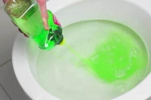 Παίρνει το υγρό πιάτων και αρχίζει να το ρίχνει στην λεκάνη της τουαλέτας; το αποτέλεσμα; Εκπληκτικό!