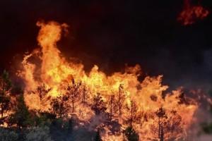 Η Πολιτική Προστασία προειδοποιεί: Yψηλός κίνδυνος πυρκαγιάς την Τρίτη!