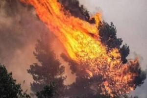 Εσβησε μετά από 70 ώρες η τελευταία μεγάλη φωτιά στην Πορτογαλία!
