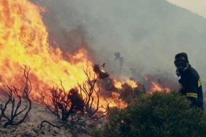 Ασπρόπυργος: Πυρκαγιά σε δασική περιοχή!