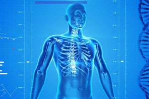 Δέκα παράξενες αλήθειες για το ανθρώπινο σώμα