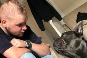 Θα συγκινηθείτε: Σκύλος πέθανε 15 λεπτά μετά τον θάνατο του ιδιοκτήτη του!