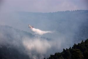 Φωτιά ξέσπασε στην Ηλεία!