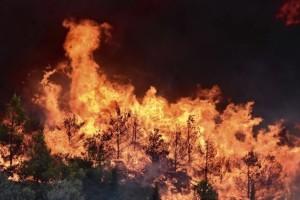 Πυρκαγιά στην Μάνδρα Αττικής: Καίει δασική έκταση στη βόρεια πλευρά του Κιθαιρώνα!