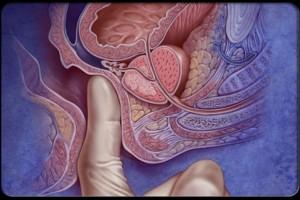 Πρωκτικό sex: Πώς να μπαίνει το πέος για να μην την πονάς! Τι πρέπει να κάνετε!
