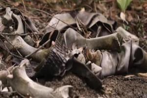 Ανατριχιαστική ανακάλυψη: Τα πτώματα συνεχίζουν να κινούνται επί έναν χρόνο! (Video)