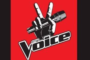 """Τρίτωσε το κακό: Ποιος αποχωρεί από το """"Voice"""";"""